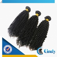 Popular new products high quality 100 percent human mongolian afro kinky curly hair