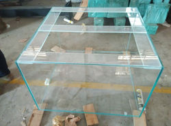 China Professional Custom Square Clear Glass Fish Tank