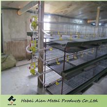 meat chicken breeding cage