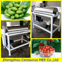 Low price high efficiency olive seed remove machine with fast delivery