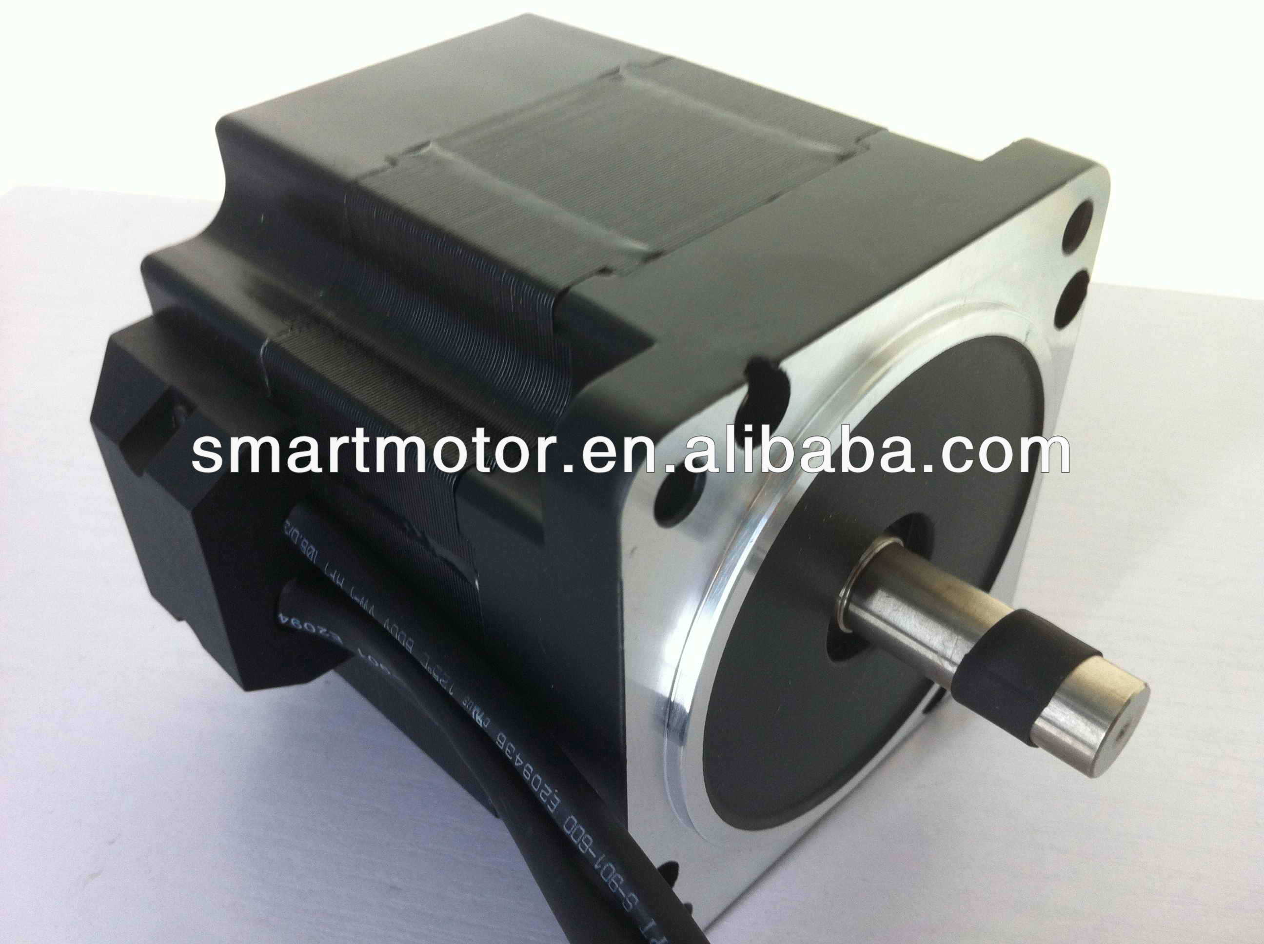 Brushless Brushed High Torque 12v Dc Electric Motor 12