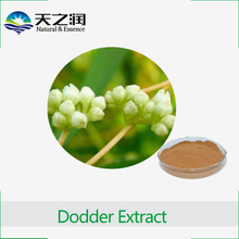 Supply Natural herb extract Chinese Dodder Seed Extract / Semen Cuscutae extract 10:1 20:1