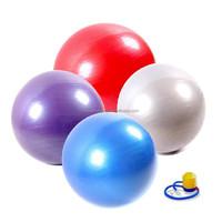 HOT SALE 75cm Anti-burst Eco-friendly PVC Gym Ball Exercise Ball Yoga Ball