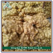 Potato specifications