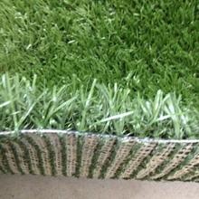 Perfetto no- tossico usa e getta cane tappeto tappetino da compagnia in erba artificiale