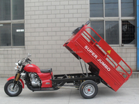 high class economic three wheel motorcycles /tricycles