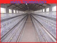 farm supplies chicken farm supplies chinese bird cage chicken cage for sale