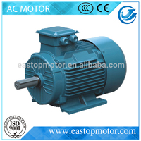 Y2 Series Three Phase 90kw 2970rpm electric motor