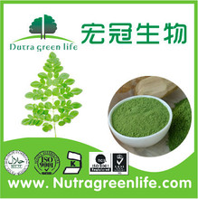 ISO factory moringa powder moringa seeds suppliers Great stock with competitive price