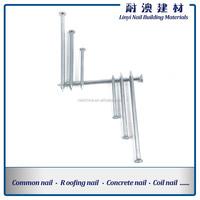 Concrete Nail/Galvanized Concrete Steel Nails