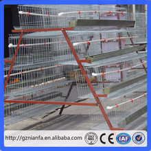Chicken House Bird Cage/Poultry farm equipment Bird Cage/Bird Cage(Guangzhou Factory)