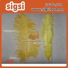 plumas de faisán blanqueados y coloridos