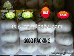 2015 China garlic price