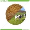 Bulk Stock Nicarbazin veterinary product pharmaceutical nicarbazine made in China