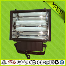 best selling brightness high quality induction flood light
