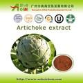 la venta certificados extracto de alcachofa con una calidad superior cinarina