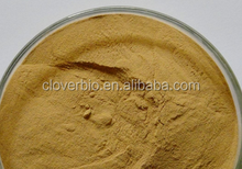 10:1 natural Black cohosh Extract powder
