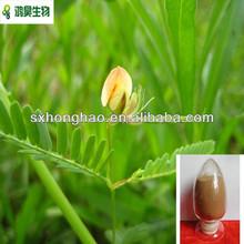 superior calidad de cassia nomame extracto de la semilla