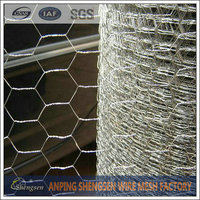 Building Your Dream Chicken Coop PVC Coated Hexagonal Wire Mesh
