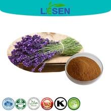 Pure Natural Lavender Extract/ Lavender P.E. Powder