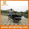 Elegant shape 250cc fashion whole sale tricycle cargo bike for sale for wholesales