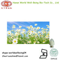 Dried Chamomile flowers Extract Powder/ Chamomile Flower Extract / Organic Chamomile Powder 98%
