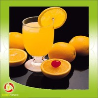 Chinese manufacturer fruit juice orange juice with competitive price