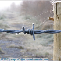 General Galvanized Barbed Wire Fence/Electro Galvanized Barbed Wire Fence/Real Factory In Anping(Gold Supplier/ manufacturer)