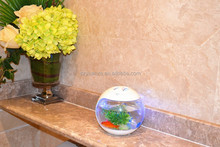 domestic desktop aquarium fish tank for coffee table