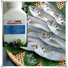 Natural direct fish and meat preservative e polylysine