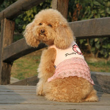 Sweet lovable wholesale dog dress for small dogs