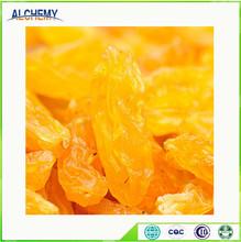Pure Natural raisins dried price