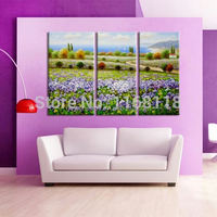 3 piece decor art set classic pastoral scenery morning glory flowers field landscape hand painted Oil Painting on Canvas
