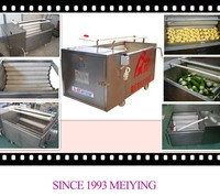 Hot sale in India Australia Canada Pakistan Nepal spray professional vegetable and fruit bubble washer