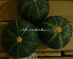 Chinese Fresh Mini Pumpkin