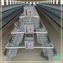 Automatic poultry farming equipment wholesale bird cages,Multi-tier galvanized layer chicken cage for sale