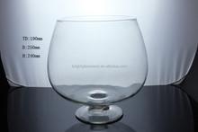 Glass Brandy shape fish bowl and fish jar