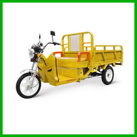 Three Wheel Motor Tricycle for Cargo with Cheap Price