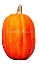 NEW DESIGN---2011 Hot-Selling Natural Popular large plastic pumpkins