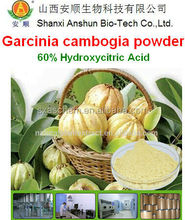 garcinia cambogia fruit extract/weight loss