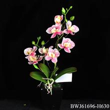 2014 Nuevo diseño Touch Artificial flor de la orquídea real con olla de cerámica para la decoración