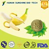 2015 Hot selling product manufacture supply organic banana extract powder