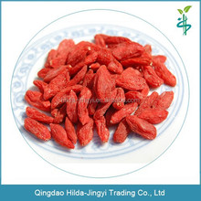 GMP high quality certified organic goji berry