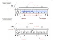 DBWA-1000 Automatic Electrical Vegetable/Fruit Washing & Disinfection Line, fruit and vegetable blanching machine