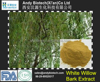 High Quality White Willow Bark Extract Salicin 25%
