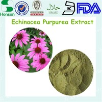 high quality echinacea purpurea extract polyphenols powder with different specification