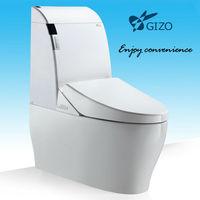 automatic water closet flush