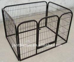 dog fences