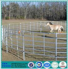 Caliente la venta de ganado ovino caprino cerca de alambre