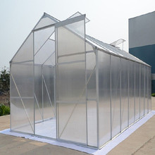 Low Cost Eonomical plastic Tunnel single span Greenhouse For Sale